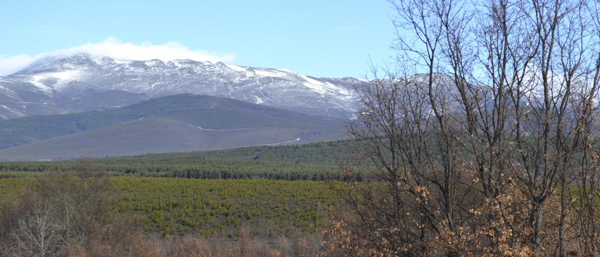 paisaje Villar de Los Pisones